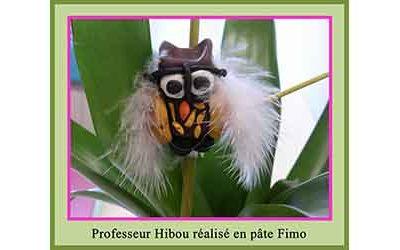 MOTS D'ENFANTS À PROPOS DE « LA LEÇON DE PROFESSEUR HIBOU »