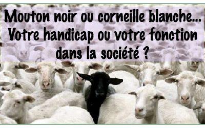 Mouton noir ou corneille blanche
